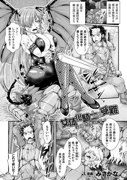 【女体化騎士の受難】表紙