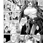 【レディース特攻隊長 翔子ちゃん】表紙画像